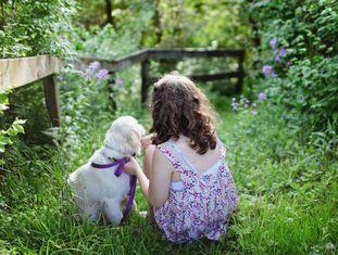 A maioria dos donos acha que seu cão entende tudo.