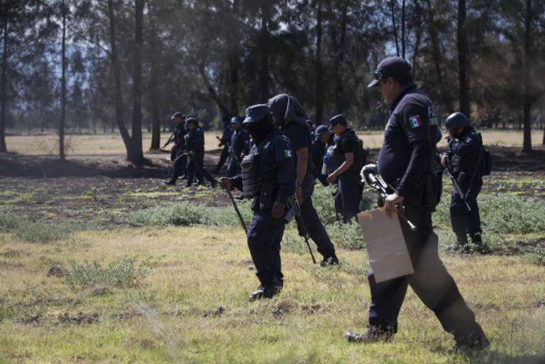 Polícia inspeciona a fazenda.