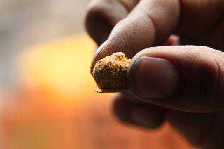 Um mineiro mostra uma pepita de ouro.
