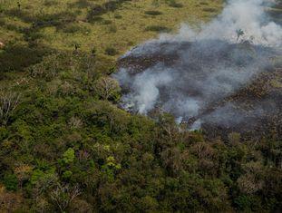 A cerca de 40 quilômetros de Rio Branco, capital do Acre, o fogo consome rapidamente toda a mata virgem e áreas de criação de animais.