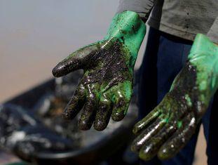 homem mostra luvas cobertas de óleo enquanto trabalha na remoção do derramamento de pretóleo na praia de Coruripe, em Alagoas