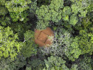 Reserva da Biosfera de Yangambi, no norte da República Democrática do Congo, com uma clareira para abrigar uma torre de fluxo onde será medida a troca líquida de CO2.