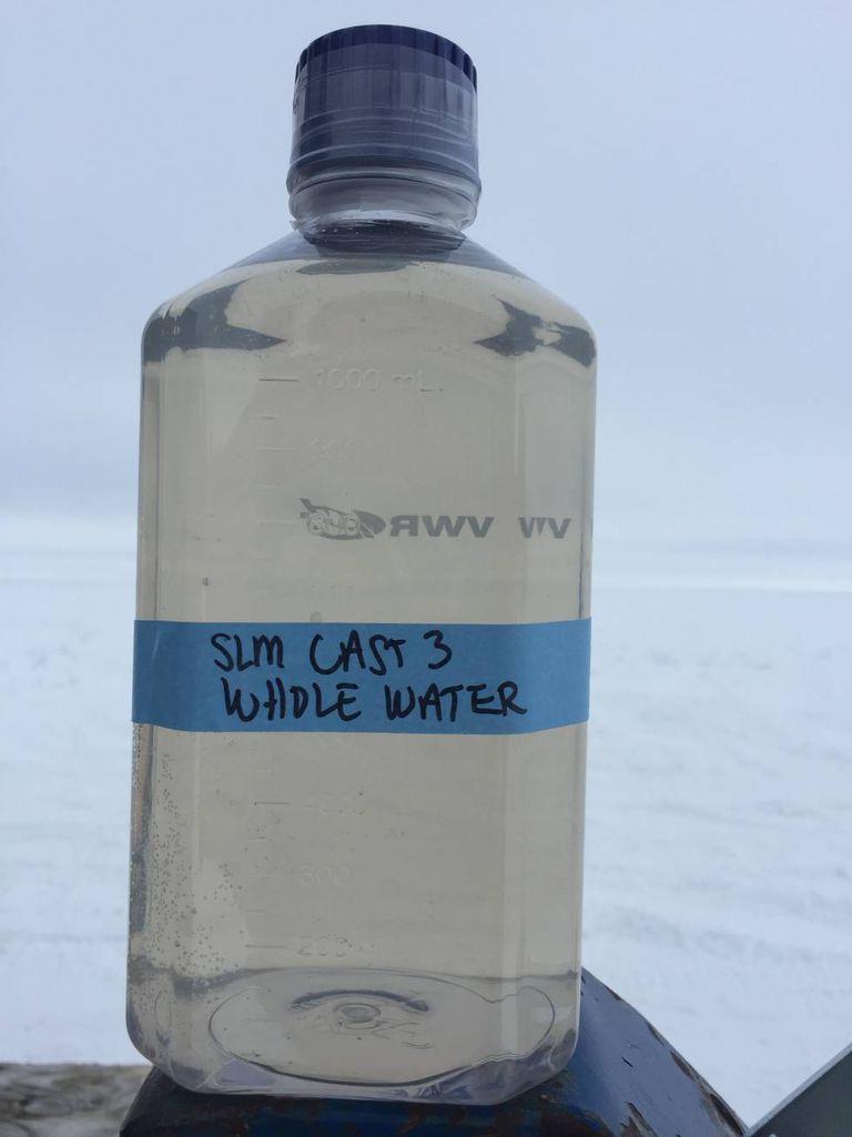 Uma amostra de água extraída do lago Mercer.