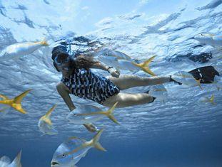 Uma mulher mergulha no recife mesoamericano no Caribe.