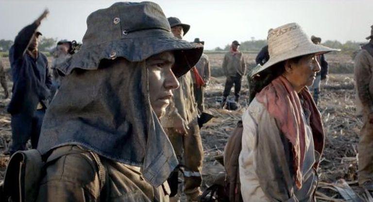 Cena do filme colombiano 'A terra e a sombra', que estreia dia 19 de novembro no Brasil.