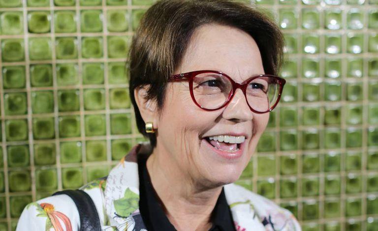 A ministra da Agricultura e do Meio Ambiente, Tereza Cristina Dias, no dia 8 de novembro em Brasília