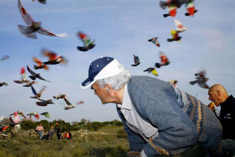 Fotografia incluída no livro 'Paloma al Aire' de Ricardo Cases.