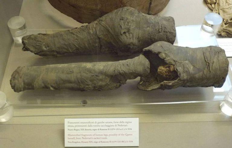 Os restos mumificados das pernas da rainha Nefertari.