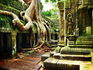 Os templos de Angkor, no Camboja, encabeçam a lista dos 500 destinos mais bonitos do mundo que o Lonely Planet reuniu em um livro muito inspirador: 'Os 500 melhores lugares para se viajar' (29,50 euros [106 reais]). É preciso pelo menos três dias para percorrer Angkor. E ainda assim é possível conhecer somente uma pequena porção desse gigantesco complexo (250 quilômetros quadrados) próximo a Siem Riep (Camboja), que foi capital do império khmer entre os séculos IX a XV. Dois monumentos se destacam entre os mais de 900 existentes no local: o Bayon e o Angkor Wat, templos piramidais encimados por grandes torres e sorridentes faces de Buda.