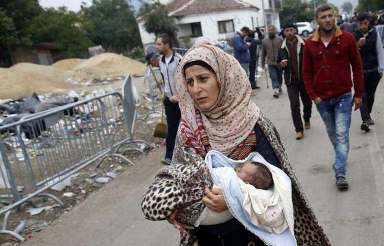 Imagem de arquivo mostra refugiados cruzando para a Sérvia.