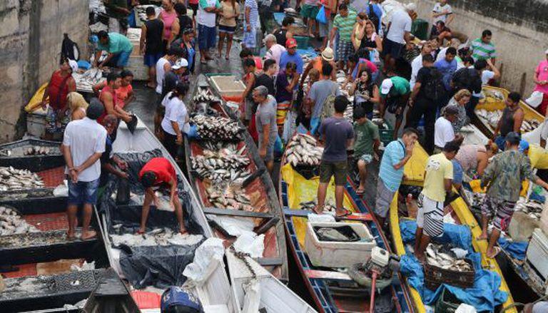 Os comerciantes vendem peixe no mercado de Manaus.