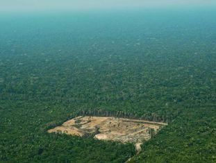 Imagem de setembro de 2017 de região desmatada na região da Amazônia brasileira.