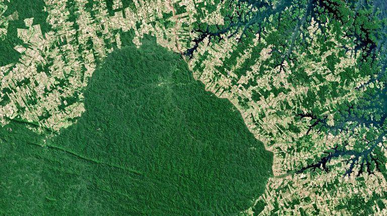 Imagem de satélite do desmatamento no norte da Terra Indígena Parakanã, no Pará