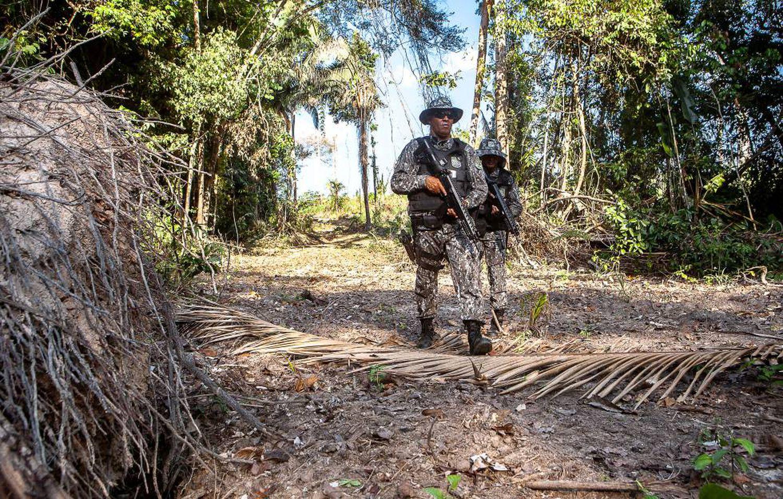 Agentes da Força Nacional buscam as pessoas que derrubam árvores numa área protegida da Amazônia.
