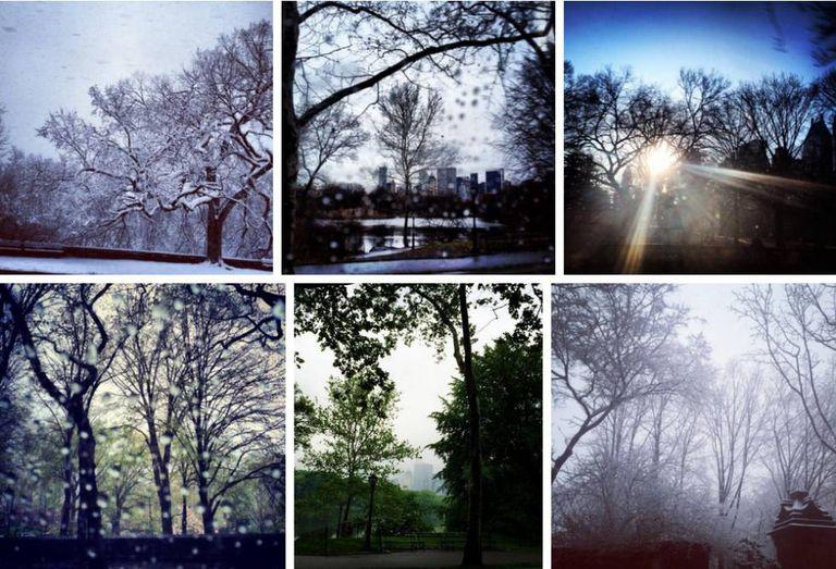 Seis das 15 fotos que Melania publicou do Central Park do interior de um carro, 2013–2015