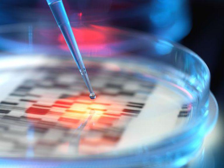 Imagem conceitual de pesquisa genética.