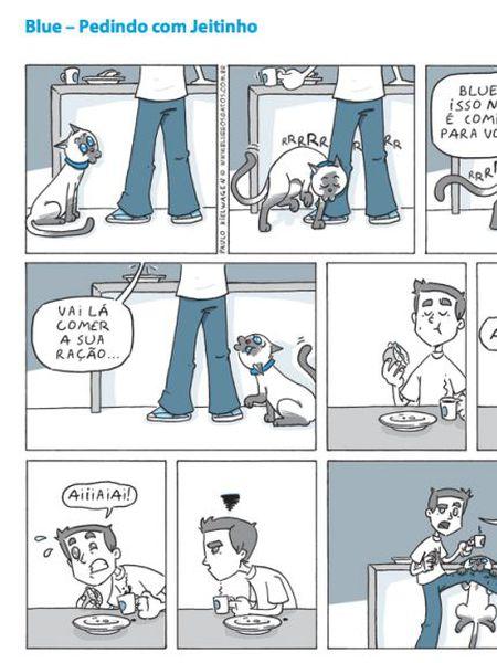 Tirinha mostra o cotidiano de quem tem gatos em casa.