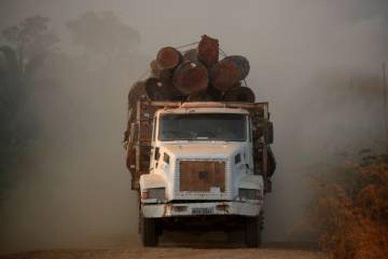 Um caminhão carregado com troncos cortados em uma área da selva amazônica
