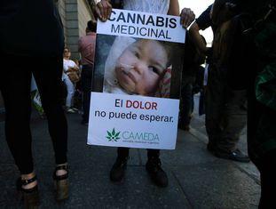 Mulher mostra cartaz a favor da legalização da maconha para fins medicinais, nesta quarta-feira.