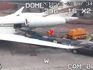 O 'narcojato' viajou de Bogotá para Londres com meia tonelada de cocaína.