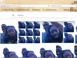 """Resultados do Google Photos à busca por """"gorilas"""" do usuário que fez a denúncia"""