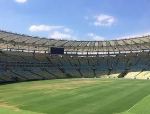 A grama do Maracanã começa a ficar amarela.