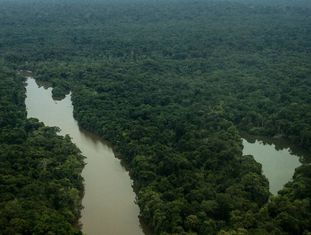 Foto aérea sobre a Terra do Meio, no Pará, hoje ameaçada pela grilagem