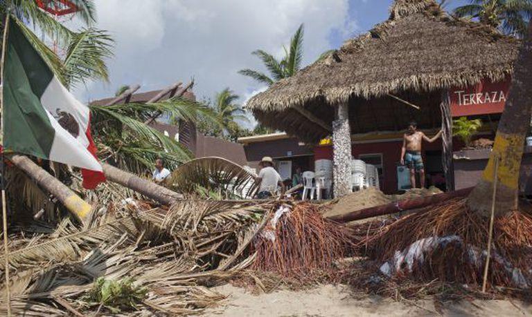 Homens limpam terreno após queda de árvores.