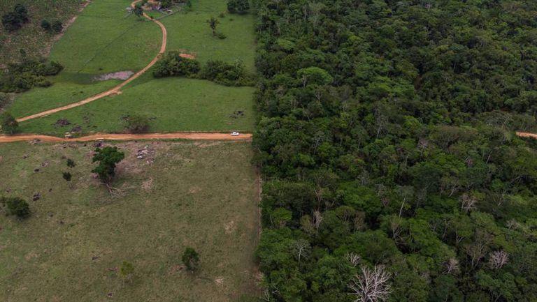 Uma zona arborizada e uma área de cultivo de Rondonia, na Amazonia.