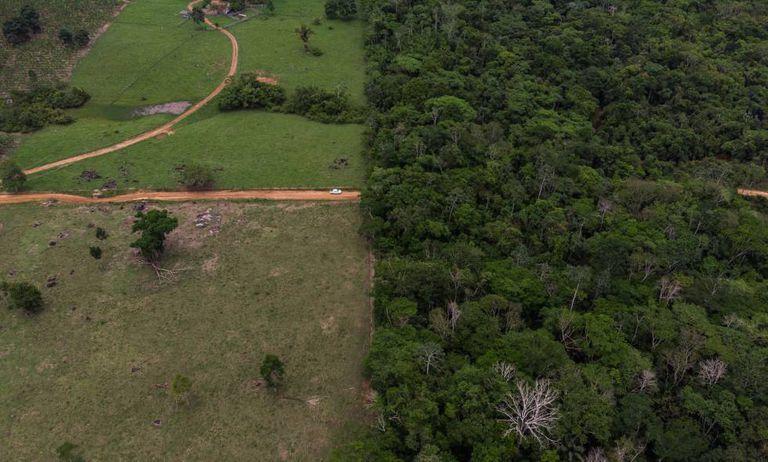 Fronteira entre uma fazenda, à esquerda, e o Território Indígena Suruí.