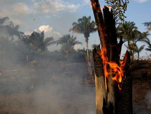 Embora reconheça o problema que antes negava, presidente Bolsonaro insinua que ONGs podem estar por trás das queimadas que já atingem reservas indígenas