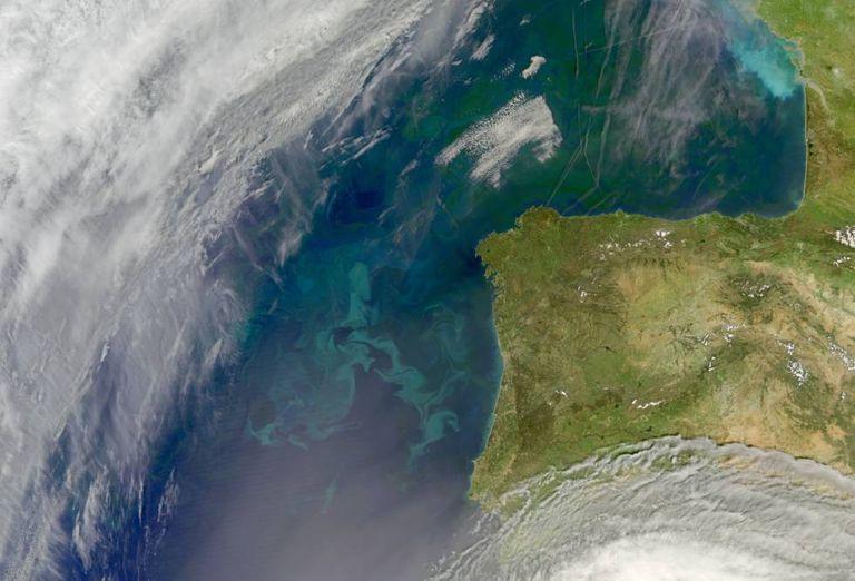 Aglomeração de fitoplâncton na costa da Península Ibérica e, ao norte, no golfo de Biscaia.