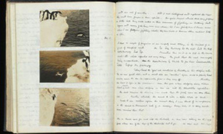 Caderno de notas de George Murray Levick sobre os pingüinos.