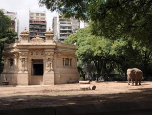 A elefanta asiática Mara, resgatada de um circo, no Zoológico de Buenos Aires.