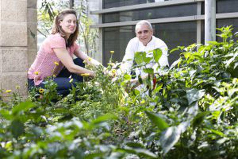 Fernanda Danelon e o chefe Thierry Buffeteau, do restaurante Eau French Grill, na horta do hotel Grand Hyatt.