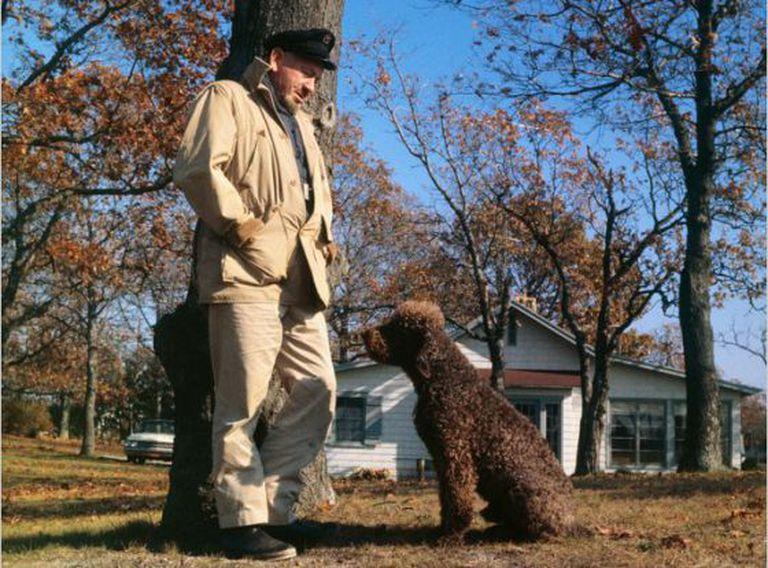John Steinbeck e seu cão em 1962, ano da publicação de 'Viajando com Charley'.