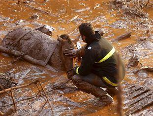 Trabalhador do resgate tenta salvar um cavalo preso no mar de lama.