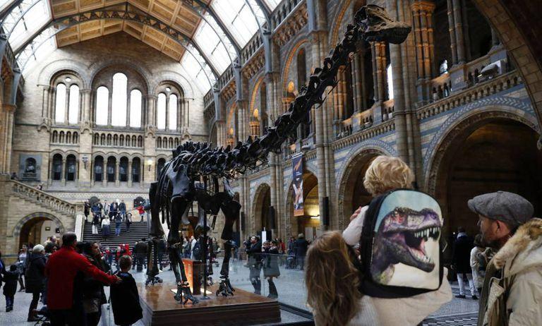 Visitantes no Museu de História Natural de Londres em janeiro.