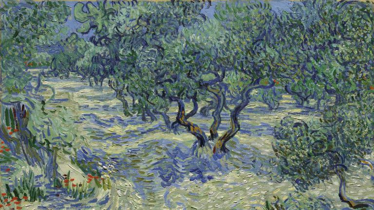 'As Oliveiras', quadro do Van Gogh