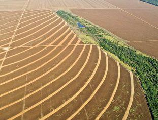 Campos de cultivo em Mato Grosso, Brasil.