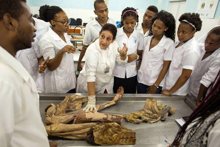 A médica Vallentina Cuello Vargas usa um cadáver para explicar o sistema vascular a alunos de anatomia do primeiro ano, na Escola Latino-Americana de Medicina (ELAM).