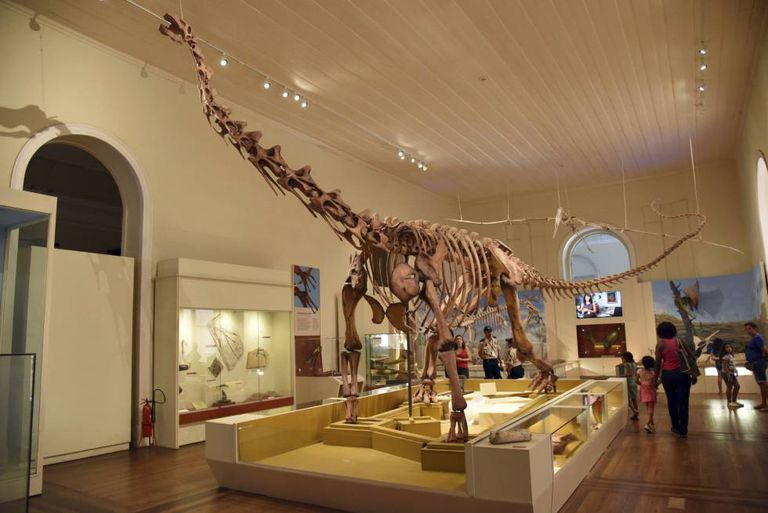 Fóssil de dinossauro exposto no Museu Nacional, destruído em incêndio no dia 2 de setembro.