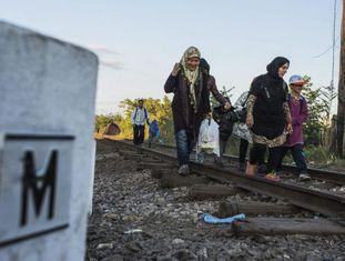 Refugiados caminham próximos à fronteira da Hungria.