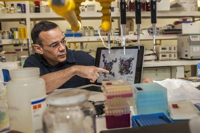 O pesquisador Guilherme Santos mostra sua pesquisa.