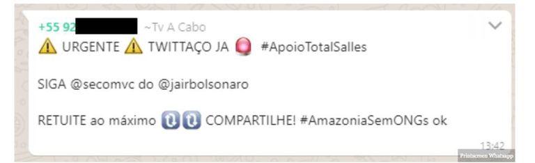 Mensagem chamando para twittaço em favor do ministro Ricardo Salles e contra ONGs na Amazônia circulou em grupos do WhatsApp.
