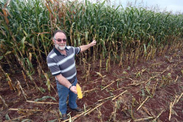 O produtor de milho Aker Van Der Vinne, em Maracaju.